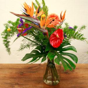Ramo de strelitzia, anthurium, statice, gerbera, craspedia, monstera y esparraguera de color rojoa, lila y naranja