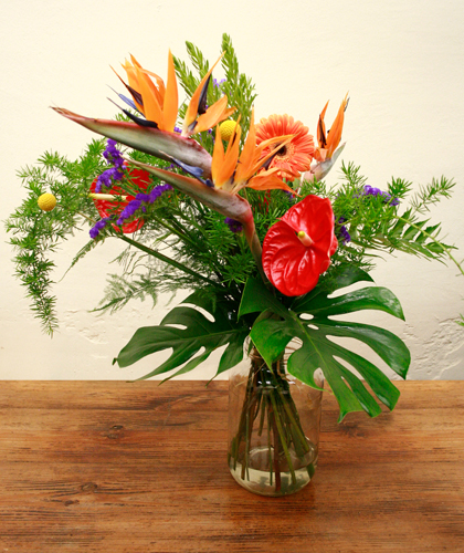 Ram de strelitzia, anthurium, statice, gerbera, craspedia, monstera i esparraguera de color vermell, lila i taronja..