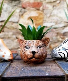 Test ceràmic amb forma de cap de lleopard.