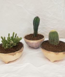 test rodó esmaltat i pintat a mà. Inclou el cactus.